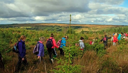 East Clare Walking Festival