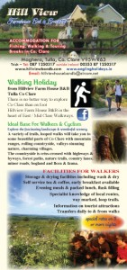 DL FLYER 2017-walking
