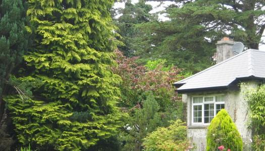 Lough Derg Garden Trail