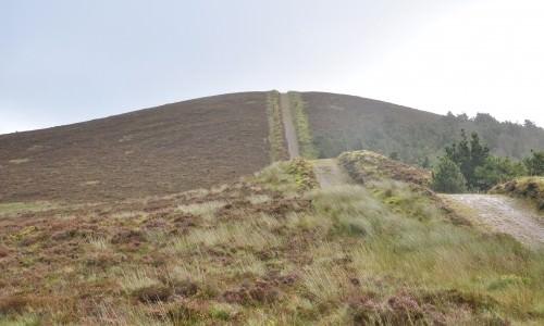 Knockanroe Wood Loop