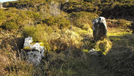 Graves of the Leinstermen